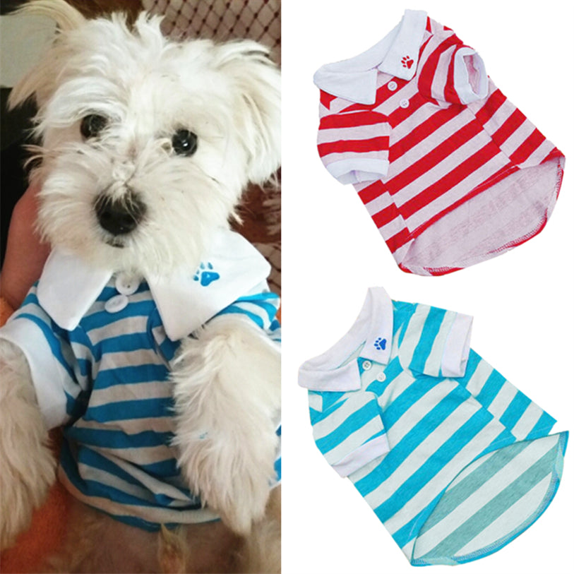 Preppy Striped Polo Shirt
