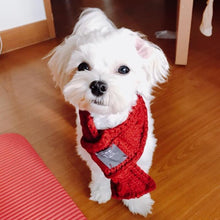 Chunky Knit Dog Scarf