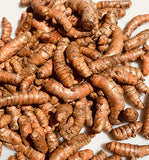 Turmeric Whole Raw Root