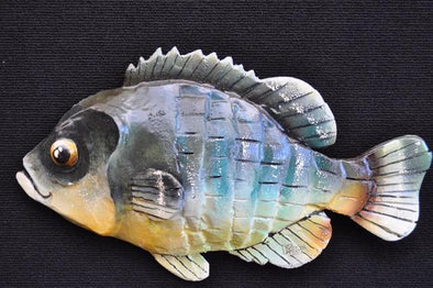 Bluegill Shingle Fish