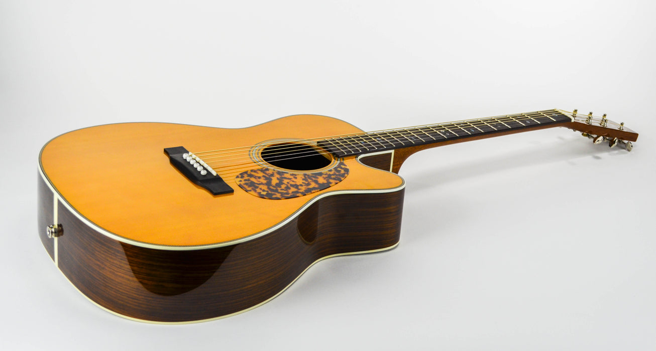 Blueridge BR-163NCE w/ Hard Shell Case