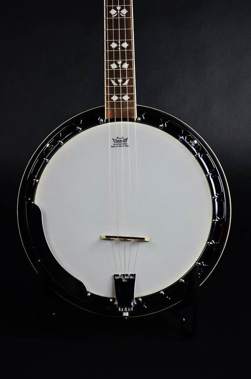RK-R20 Recording King Songster Resonator Banjo