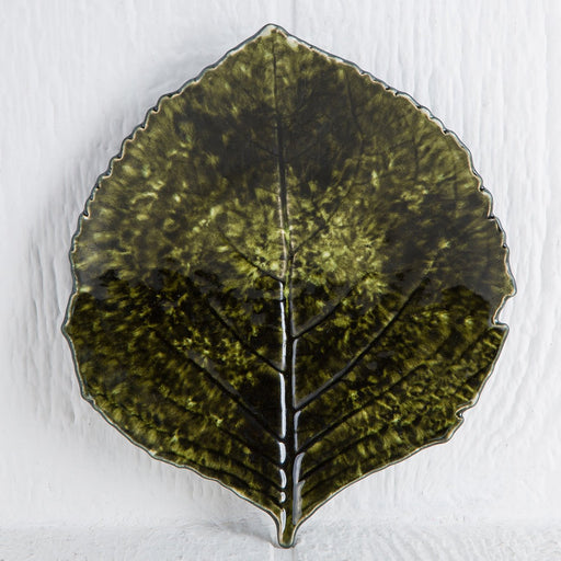 Dark Green Cordate Forest Leaf