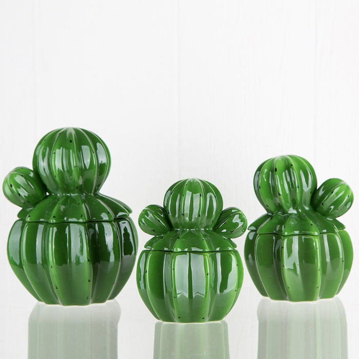 Decorative Ceramic Cactus Jar (Large)