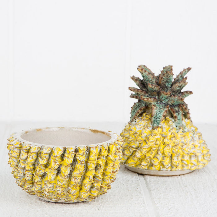 Decorative Pineapple Box