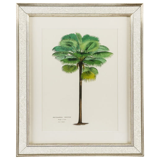 Global View- Palm Tree Print