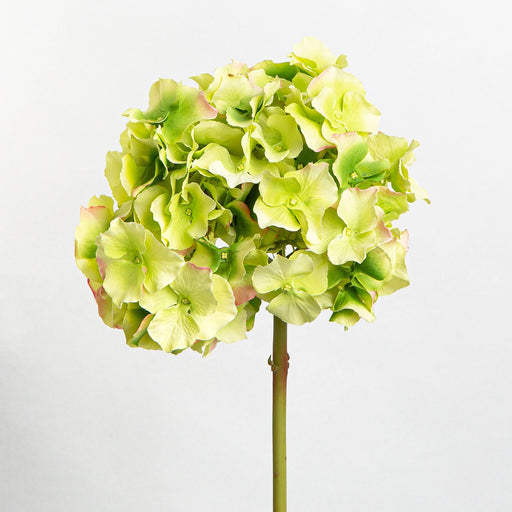 Green Hortensia Silk Flower