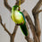 Green Parrot Glass Ornament