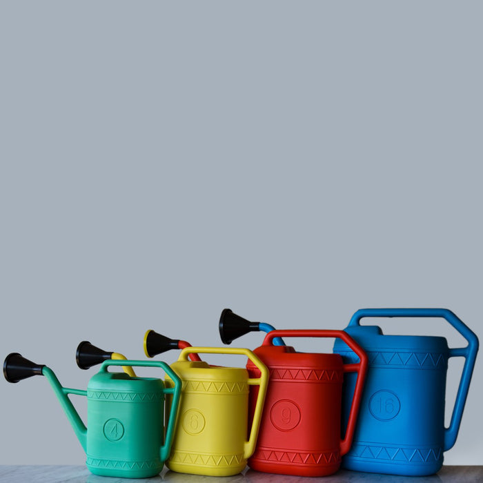 Green Plastic Watering Can *Made in the Netherlands (4 Liters)
