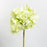 Light Green Hydrangea Silk Flower