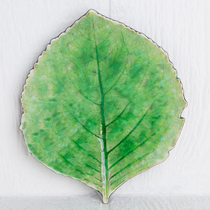 Medium Green Cordate Forest Leaf