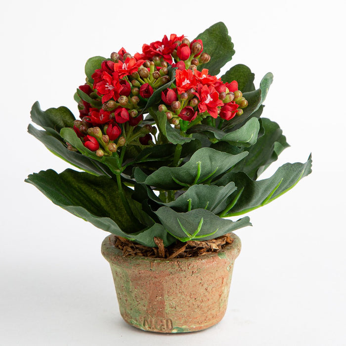 Potted Red Kalanchoe Silk Flower