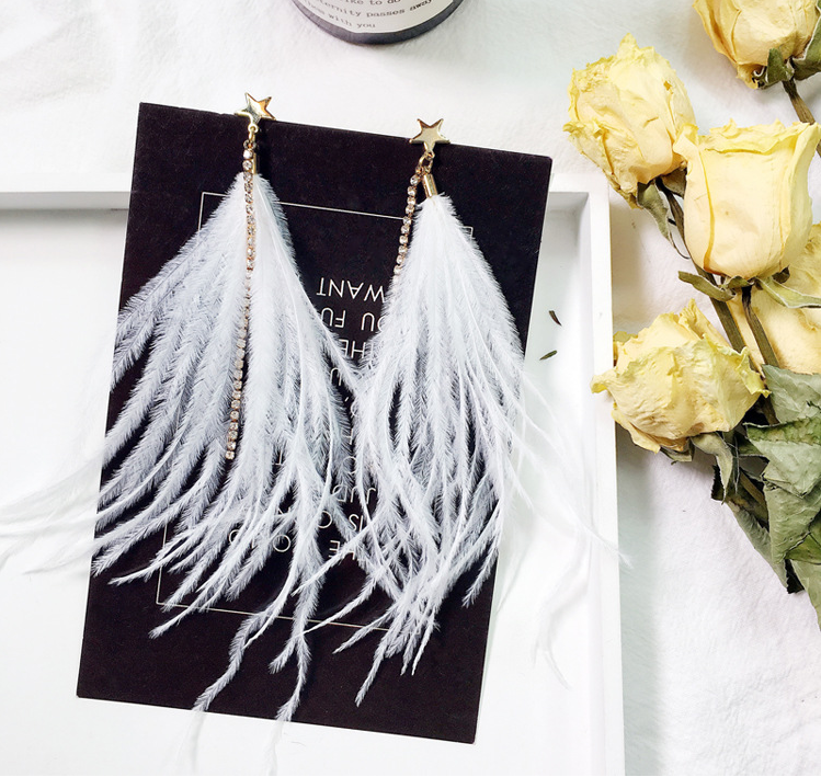 Long fringed feather pentagram sparkling earrings wedding Bridesmaids