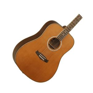 6-string Acoustic Guitars