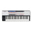 Novation 61 Remote SL Mk II 61-key USB MIDI Controller - Music Bliss Malaysia