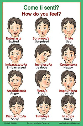 Italian Language School Poster - Words about Feelings - Wall Chart for Home and Classroom - Italian and English Bilingual Text