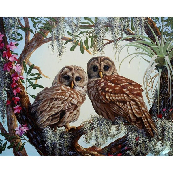 Owl Couple On Flowery Tree DIY Painting by Numbers on Canvas Art Kit S711