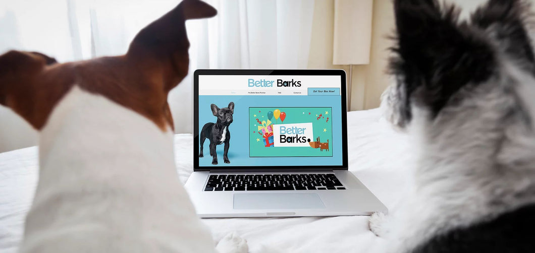 Monthly BetterBarks Subscription box