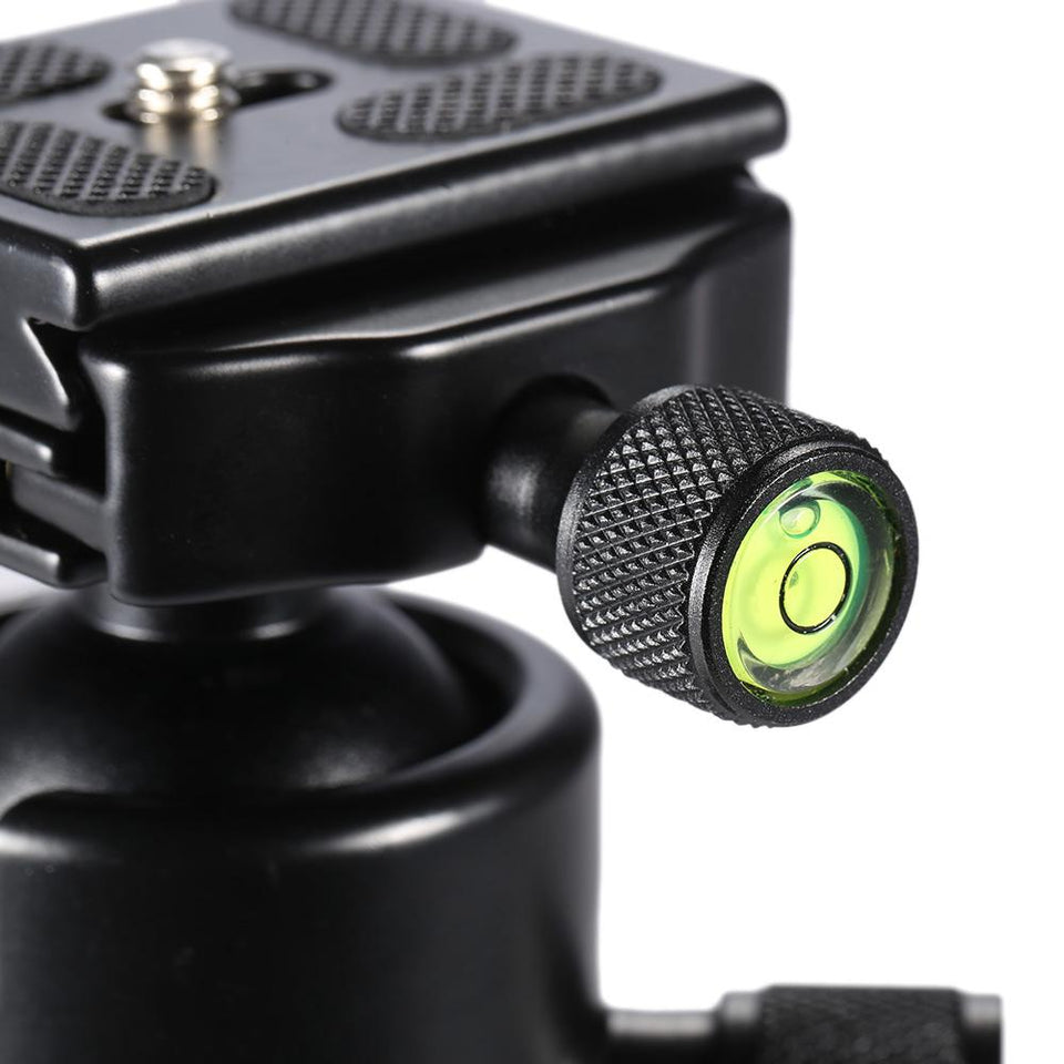 Heavy Duty 360 Tripod Ball Head