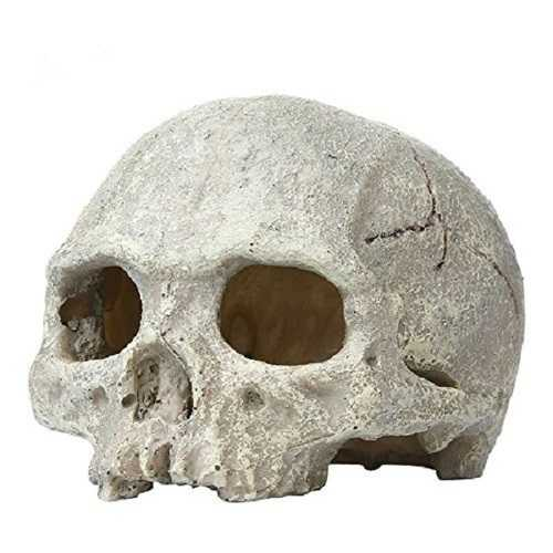 Yani Aquarium Fish Tank Ornament Resin Head Bone Skull Emulational Skelecton Aquarium Decor