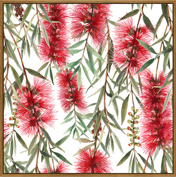 Bottle Brush Hanging 100x100