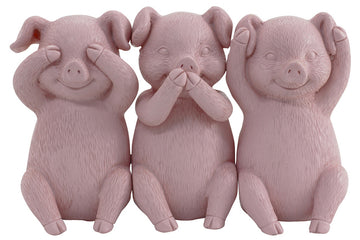 Wise Piggies