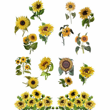 Sunflowers Transfer