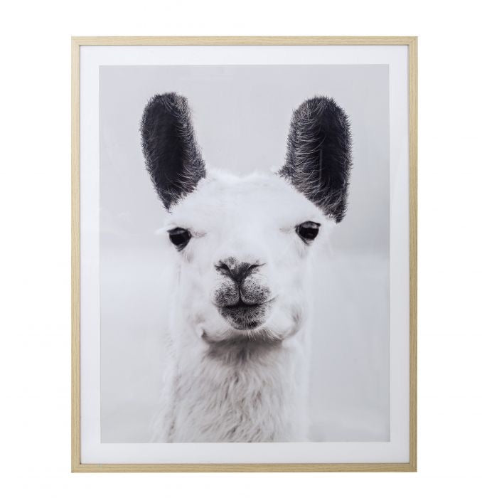 Lenny Llama Wall Decor 80x100 - PICK UP ONLY