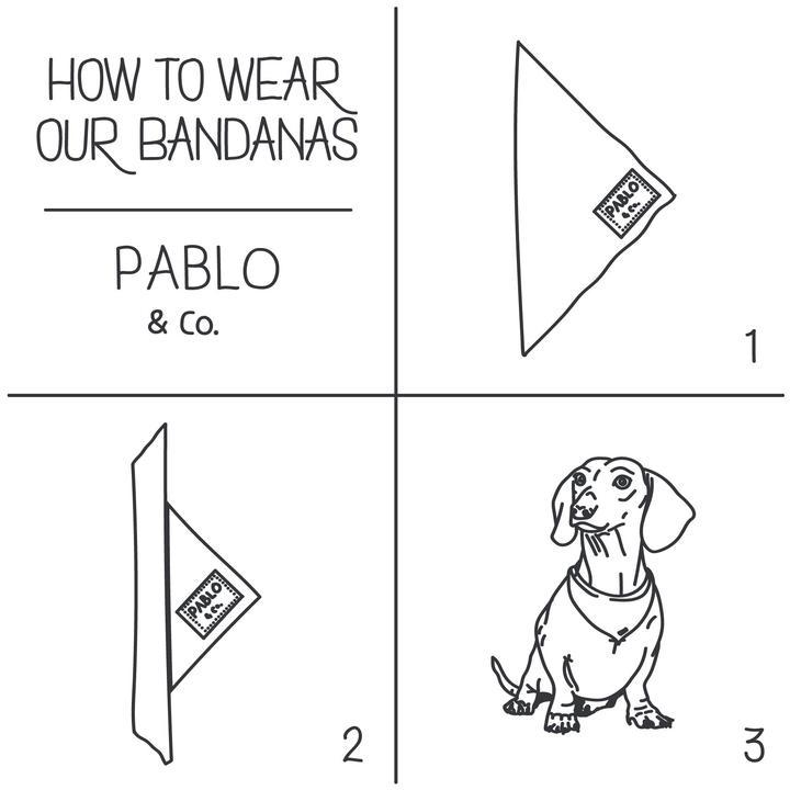 Bubble o Bill Bandana