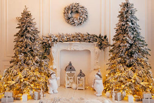 Beautiful Christmas Indoors Decoration For Holiday Backdrop G-1195