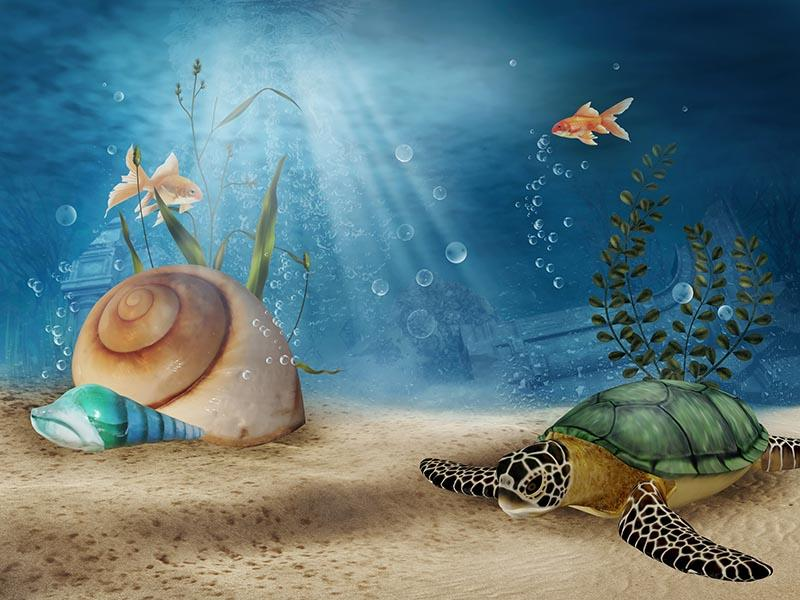 Snail Sea Turtle Under The Sea For Summer Photography Backdrop  J-0384