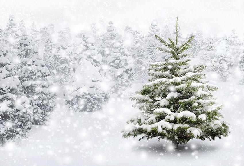 Snow Christmas Tree Photo Backdrop