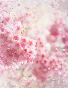 Abstract Cherry Flowers Bokeh Backdrop For Baby Spring Photography - Shop Backdrop