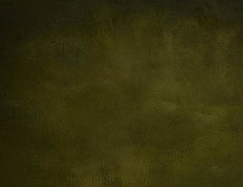 Abstract Olive Printed Old Master Backdrop For Photography J-0785 - Shop Backdrop