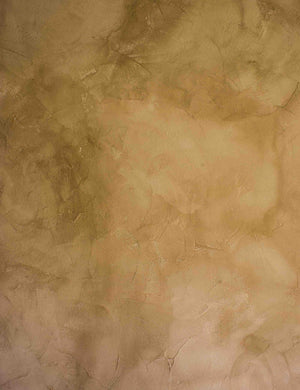 Abstract Pale Ocre Old Master Vintage Wall Backdrop - Shop Backdrop