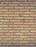 Apricot Brick Wall Backdrops For Photography