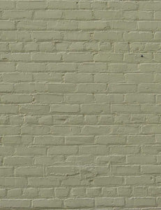 Beige Stucco Brick Wall Txture Old Master Printed Photography Backdrop - Shop Backdrop
