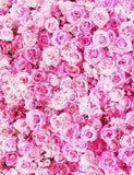 Blooming Pink Rose Flowers Backdrop For Wedding Photography