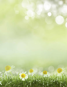 Bokeh Flowers In Sunshine Spring Background Photography Backdrop - Shop Backdrop