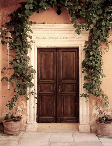 Brown Wood Door With Jasmine Wall Photography Backdrop J-0045 - Shop Backdrop
