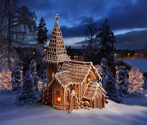 Cartoon Wooden Room In Night Snow Forest Photography Backdrop J-0244 - Shop Backdrop