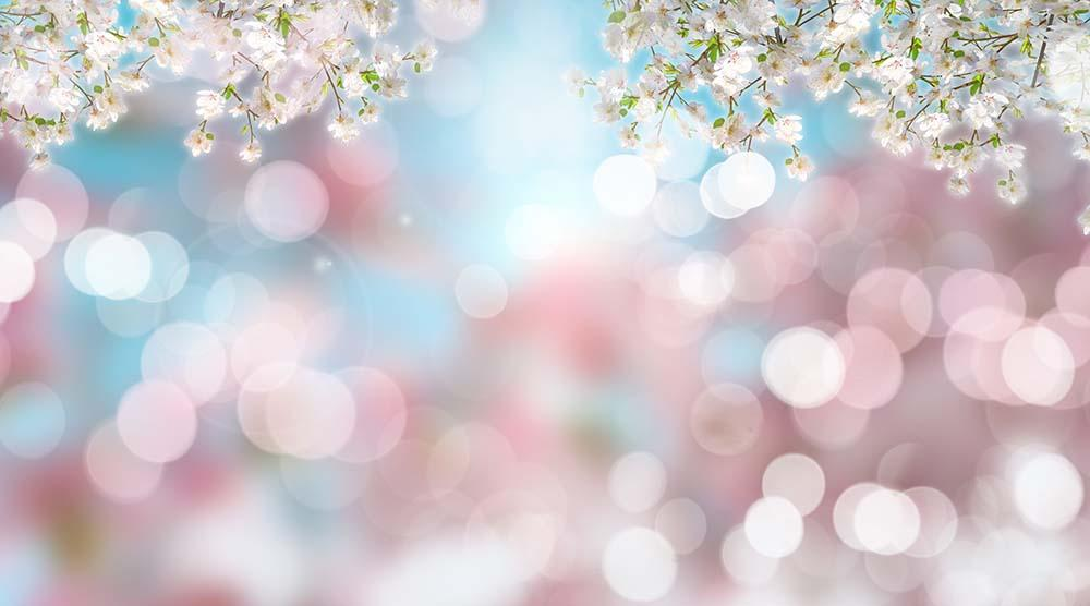 Cherry Blossom With Silver Bokeh Backdrop For Photography - Shop Backdrop