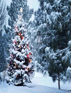 Christmas Tree Covered Snow Outdoor For Holiday Photography Backdrop J-0154 - Shop Backdrop