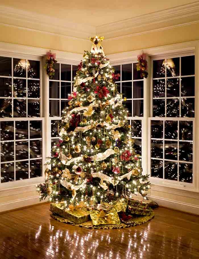 Christmas Tree With Presents And Lights Reflecting In Windows