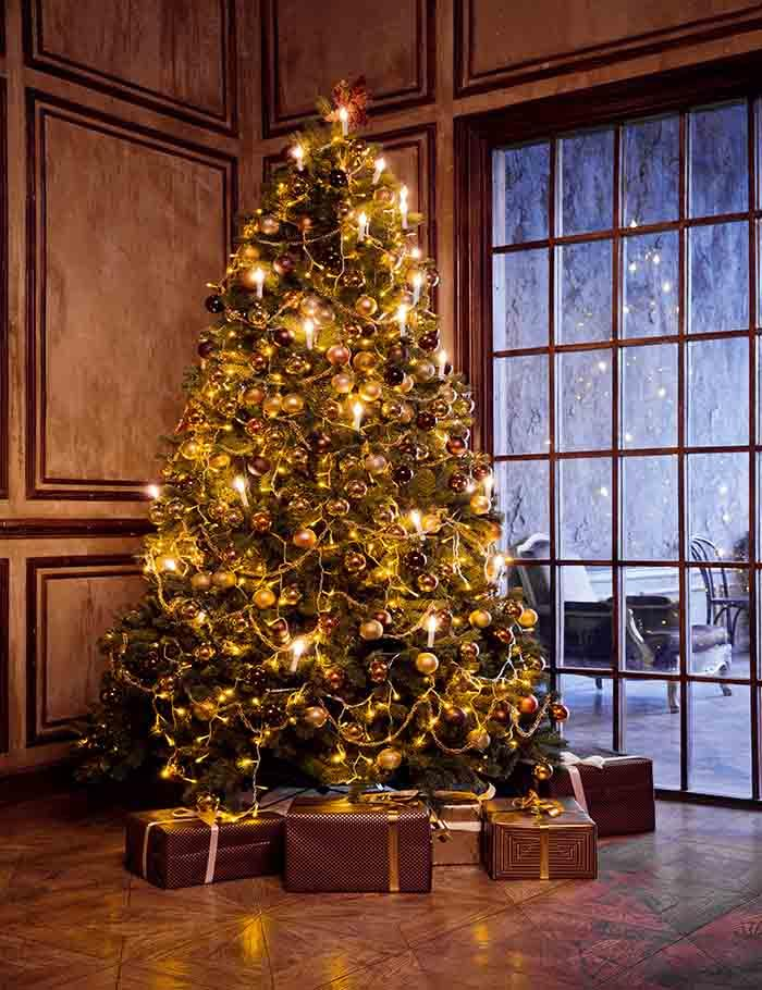 Classic Christmas And New Year Decorated Interior Room With New Year Tree Backdrop J-0013 - Shop Backdrop