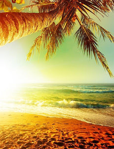 Coconut Tree Beach Under Sunset For Summer Holiday Photography Backdrop - Shop Backdrop