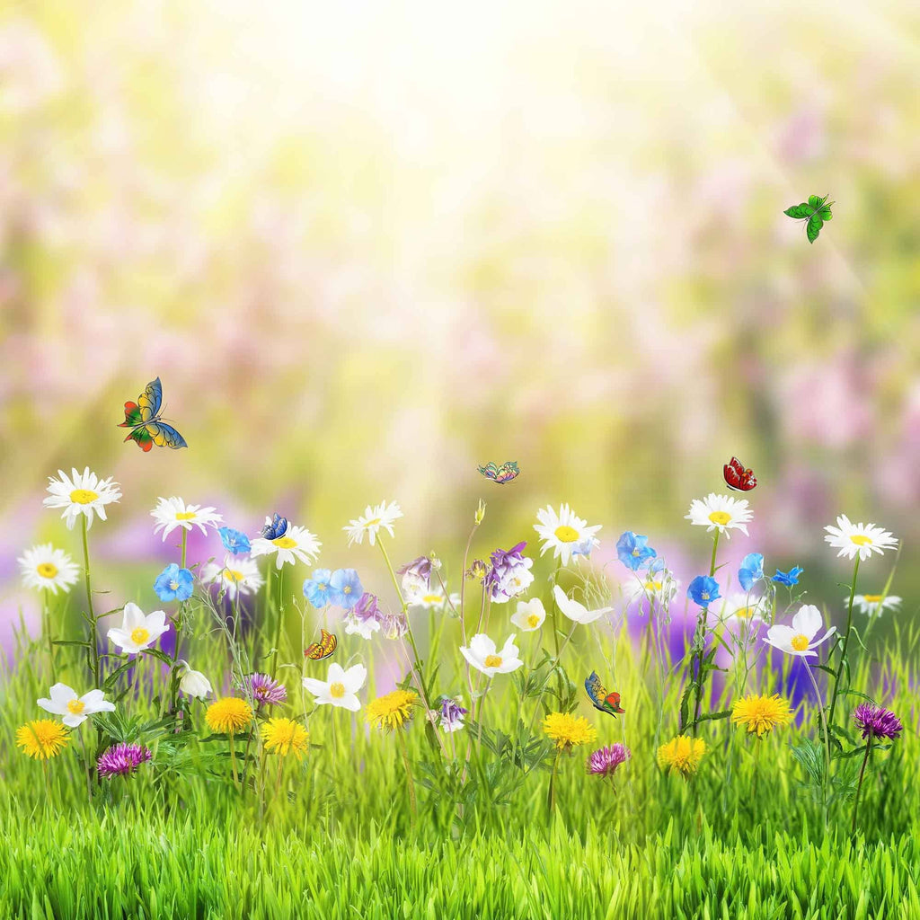 Colorful Wild flowers In Sunshine With Butterfly For Baby Photo Backdrop - Shop Backdrop