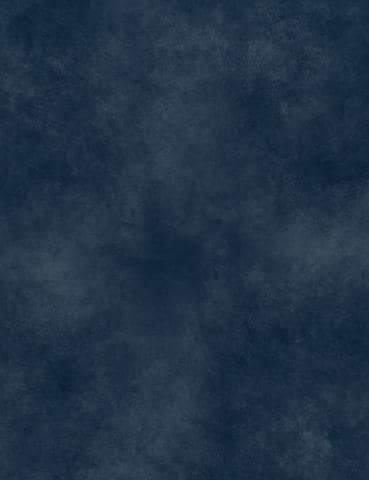 Dark Blue Printed Old Master Photography Backdrop J-0585