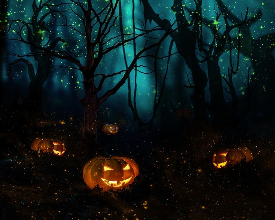 Dark Froset Evil Pumpkin With Firefly Photography Backdrop J-0533