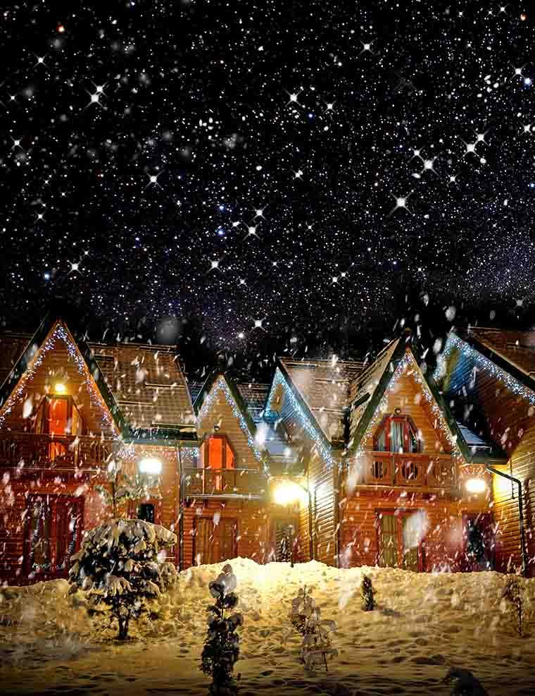 Decorated House With Christmas Lights In Night Snow Photography Backdrop J-0266